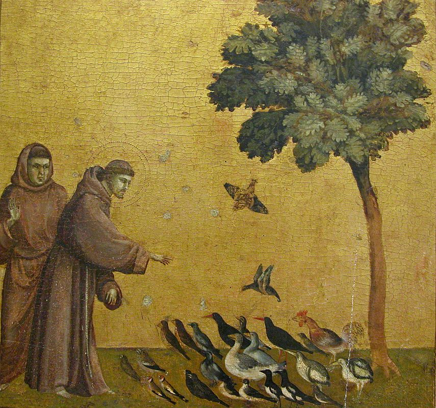 SAN FRANCISCO - Giotto di Bondone
